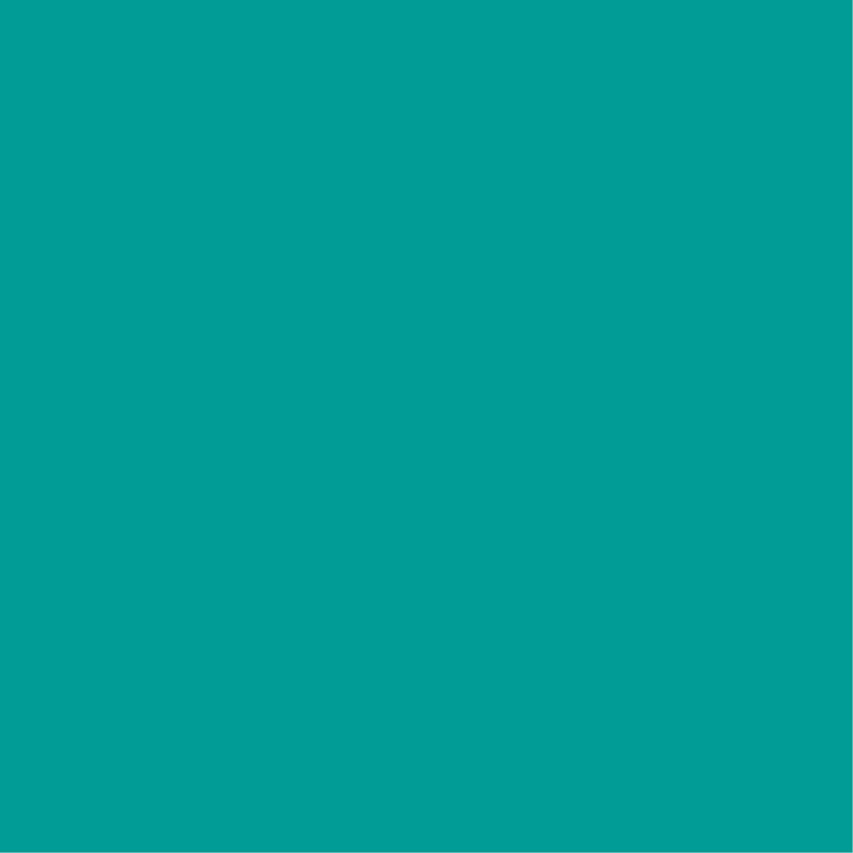 carré vert.jpg